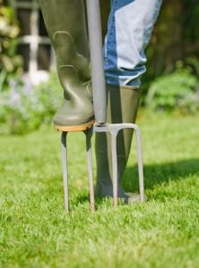 Woman gardener aerates garden lawn with a fork